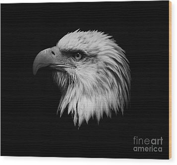 Wood Print featuring the photograph Black And White Eagle by Steve McKinzie