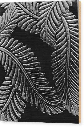 Black And White Leaves Wood Print by Tanya Moody