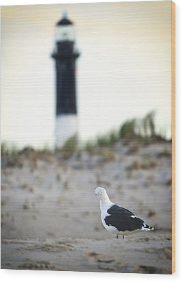 Black And White On The Beach Wood Print by Vicki Jauron