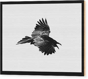 Black Bird Number 1 Wood Print