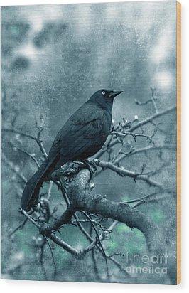 Black Bird On Branch Wood Print by Jill Battaglia