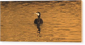 Black Bird On Surise Wood Print by Radoslav Nedelchev