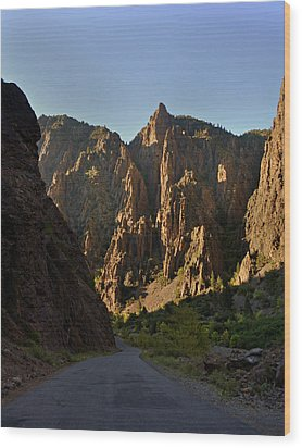 Black Canyon  Wood Print by Marty Koch