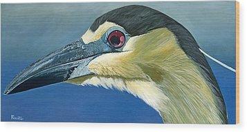 Black Capped Night Heron Wood Print by Jon Ferrentino