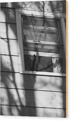 Black  Cat On A Shadowy Sill Wood Print