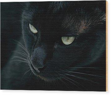 Black Panther Wood Print by Laura Melis