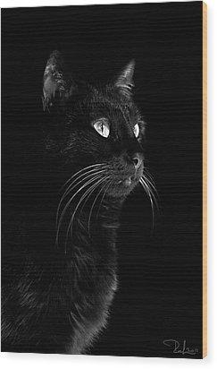Black Portrait Wood Print by Raffaella Lunelli