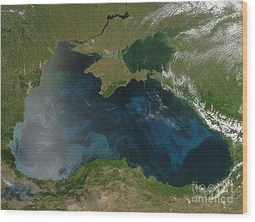 Black Sea Phytoplankton Wood Print by Nasa