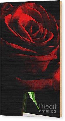 Black Shadows On Red Rose Wood Print by EGiclee Digital Prints