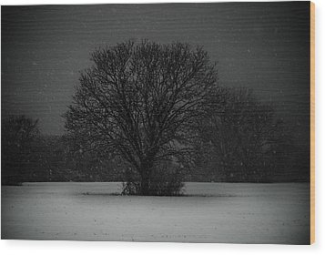 Black Snow Tree Wood Print by Sonja Quintero