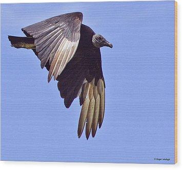 Black Vulture Wood Print by Roger Wedegis