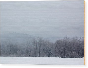 Wood Print featuring the photograph Bleak Mid-winter by Mary McAvoy