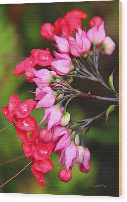 Wood Print featuring the photograph Bleeding Hearts by Kerri Ligatich