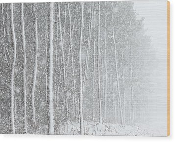 Blizzard Blankets Trees In Snow Wood Print by Douglas MacDonald