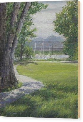 Blke Trail 1 Wood Print by Susan Driver