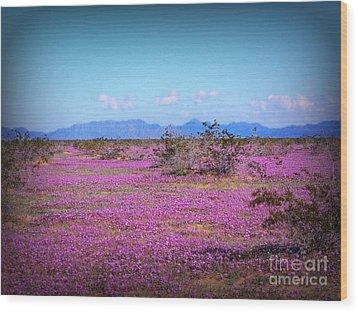 Blooming Desert Verbena Wood Print