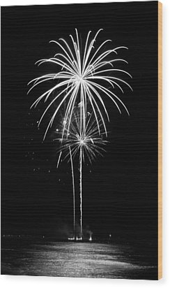 Blooming In Black And White Wood Print by Bill Pevlor