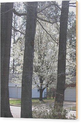 Blooming Tree Wood Print by Marlene Robbins