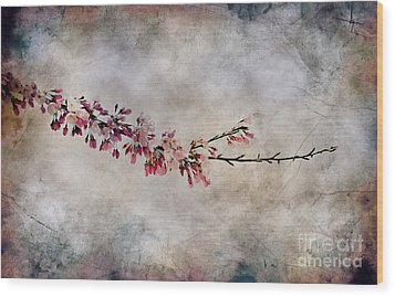 Blossom Branch Wood Print by Elaine Manley