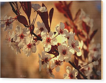 Blossoms 3 Wood Print by Mikki Cucuzzo