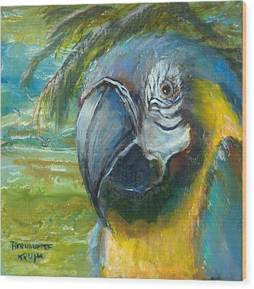 Blue And Gold Macaw By The Sea Wood Print by Bernadette Krupa