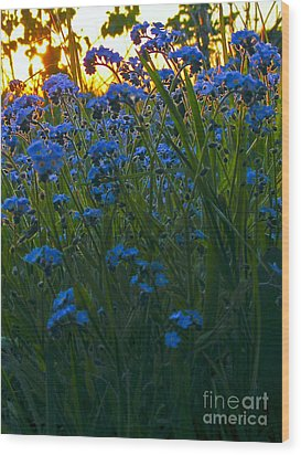 Blue And Gold Wood Print by Trevor Fellows