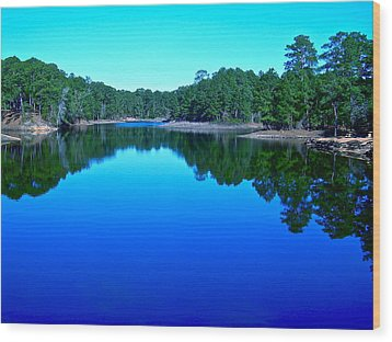 Blue Beauty Wood Print by Frank SantAgata