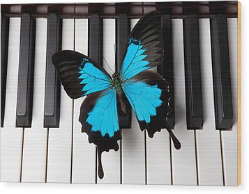 Blue Butterfly On Piano Keys Wood Print by Garry Gay