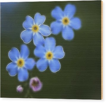 Blue By You Wood Print by Chris Hartman Price