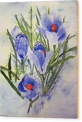 Blue Crocus In The Snow Wood Print by Joann Perry