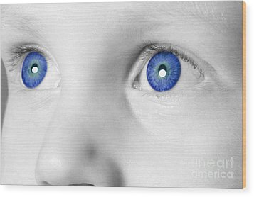 Blue Eyed Boy Wood Print by Richard Thomas