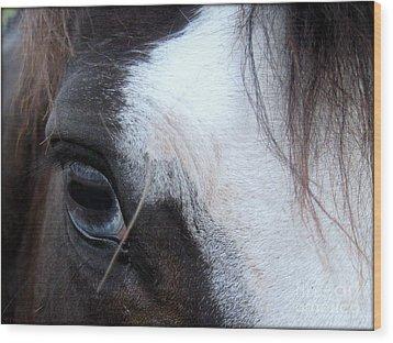 Blue Eyed Girl Wood Print by Kim Yarbrough