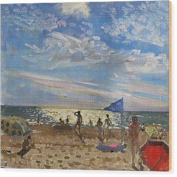 Blue Flag And Red Sun Shade Wood Print by Andrew Macara