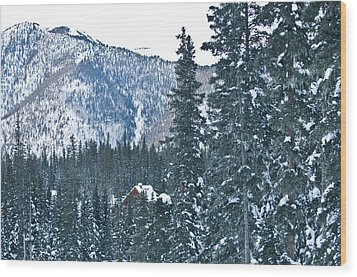 Blue Green Mountain Wood Print by Lisa  Spencer