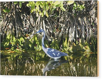 Wood Print featuring the photograph Blue Heron by Jeanne Andrews