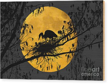 Wood Print featuring the photograph Blue Heron On Roost by Dan Friend