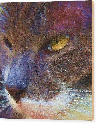 Blue Kitty Wood Print by Rachel Hames