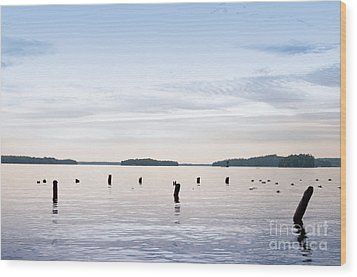 Wood Print featuring the photograph Blue Lake Muskoka by Les Palenik