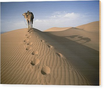 Blue Man Tribe Of Saharan Traders With Wood Print by Axiom Photographic