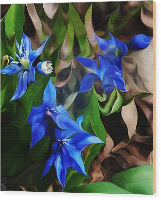 Blue Manipulation Wood Print by David Lane