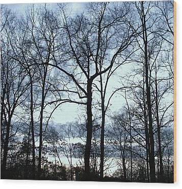 Wood Print featuring the photograph Blue Mirage by Pamela Hyde Wilson