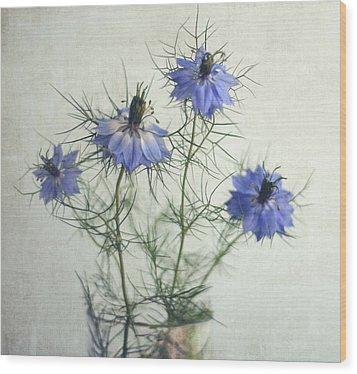 Blue Nigella Sativa Flowers Wood Print by By Julie Mcinnes