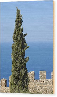 Blue Ocean And Sky Green Tree - Serene And Calming  Wood Print by Matthias Hauser