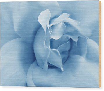 Blue Pastel Rose Flower Wood Print by Jennie Marie Schell