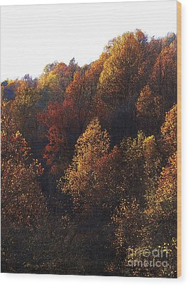 Blue Ridge 15 Wood Print by Steven Lebron Langston