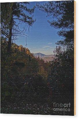 Blue Ridge13 Wood Print by Steven Lebron Langston