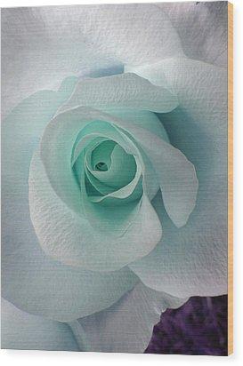 Blue Rose Wood Print by Robin Hewitt