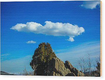 Wood Print featuring the photograph Blue Skies by Shannon Harrington