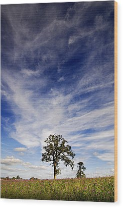 Wood Print featuring the photograph Blue Skies Smiling At Me  by John Chivers