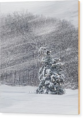 Blue Spruce Wood Print by Robin-Lee Vieira